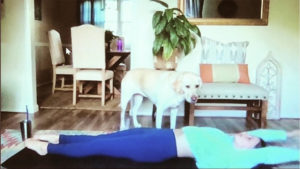 CWIB Yoga Live Stream