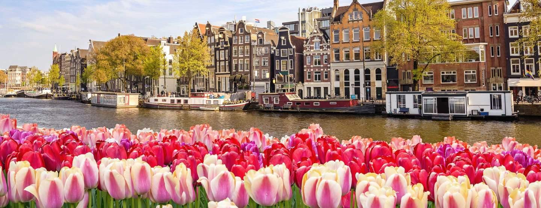 CES Maastricht, Netherlands | UNC Kenan-Flagler